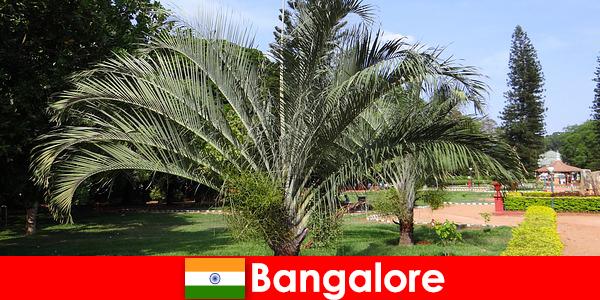 Бангалоре приємний клімат цілий рік для кожного іноземця коштує поїздка