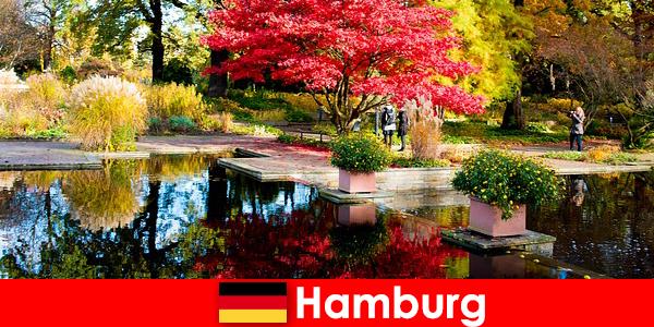 Гамбург портове місто з великими парками для спокійного відпочинку