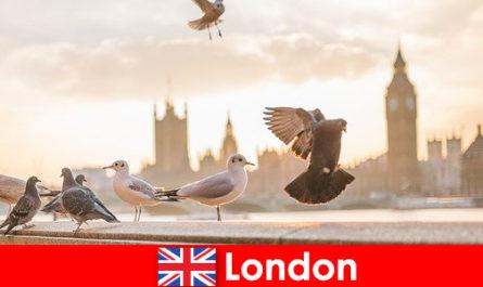 Пам'ятки Лондона для міжнародних відвідувачів