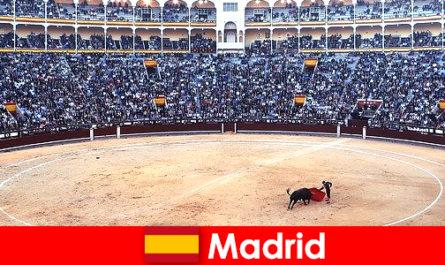 Традиційні фестивалі в Мадриді вражають кожного незнайомця