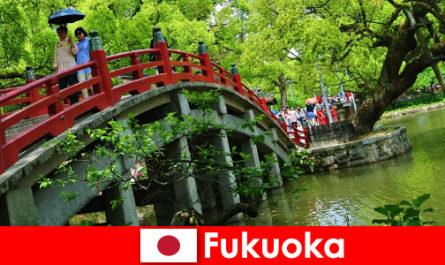 Фукуока - це спокійна і міжнародна атмосфера з високою якістю життя для іммігрантів