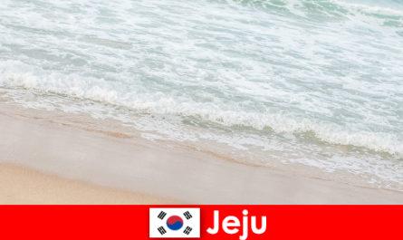 Чеджу з дрібним піском і чистою водою ідеальне місце для сімейного відпочинку на пляжі