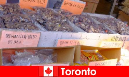 Торонто і його особливо різноманітна гастрономія не змушують мандрівника голодувати