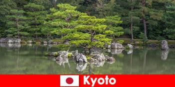 Японські сади запрошують незнайомців на розслаблюючі прогулянки в Кіото