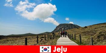 Туристи похід через фантастичний природний ландшафт в Чеджу Південної Кореї