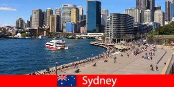 Панорамний вид на все місто Сіднея Австралії для відвідувачів з усього світу