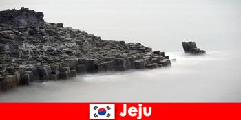 Іноземці вивчають популярні екскурсії в Чеджу Південна Корея