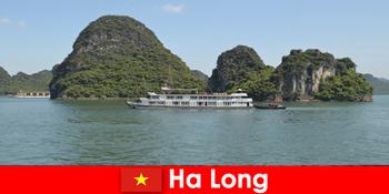 Багатоденні круїзи для туристичних груп дуже популярні в Ха Лонг В'єтнам