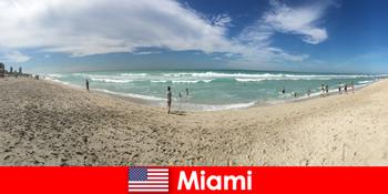 Захоплююче, стегно і унікальне відчувати себе молодими мандрівниками в теплому Майамі Сполучені Штати