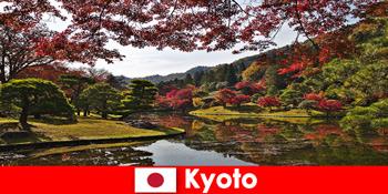Поїздка за кордон до Кіото Японія для знаменитого осіннього забарвлення листя