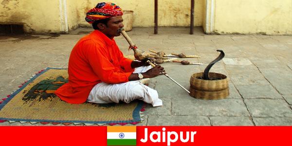У Джайпурі відпочивальники відчувають зміїні танці та розваги на галасливих вулицях